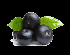 Najboljsi antioksidanti